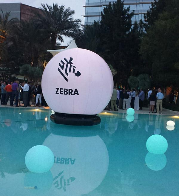Zebra-conference-2