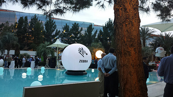 zebra-conference-1