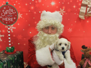 Bella and Santa Holidays