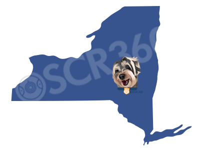 OSCR is Traveling the Country | Meet OSCR360 Today