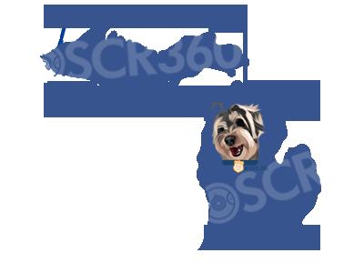 OSCR360 in Michigan