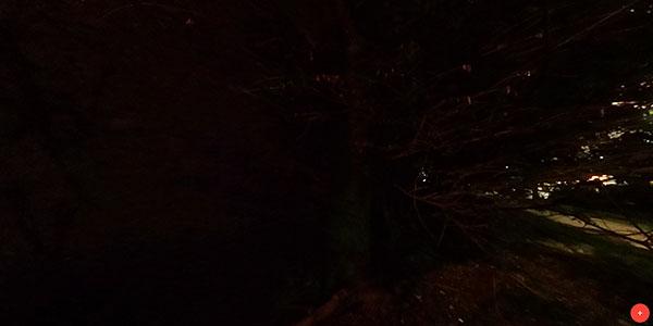 OSCR non HDR at night